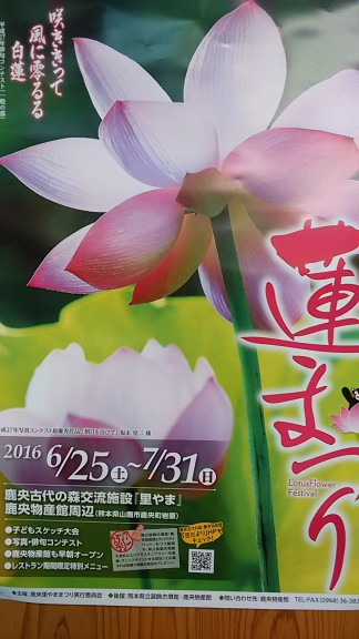 IMG_20160618-1